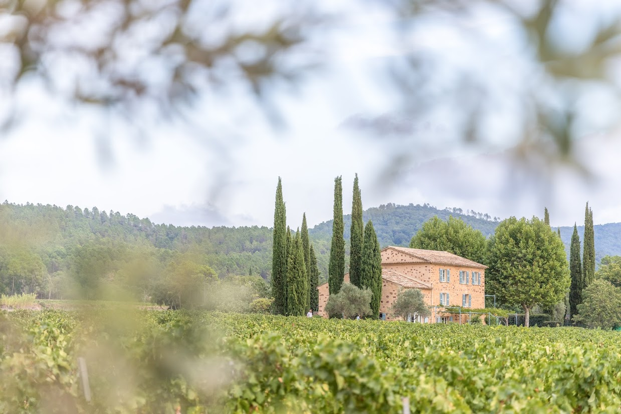 Domaine Mirabeau:  Ten Years in Provence