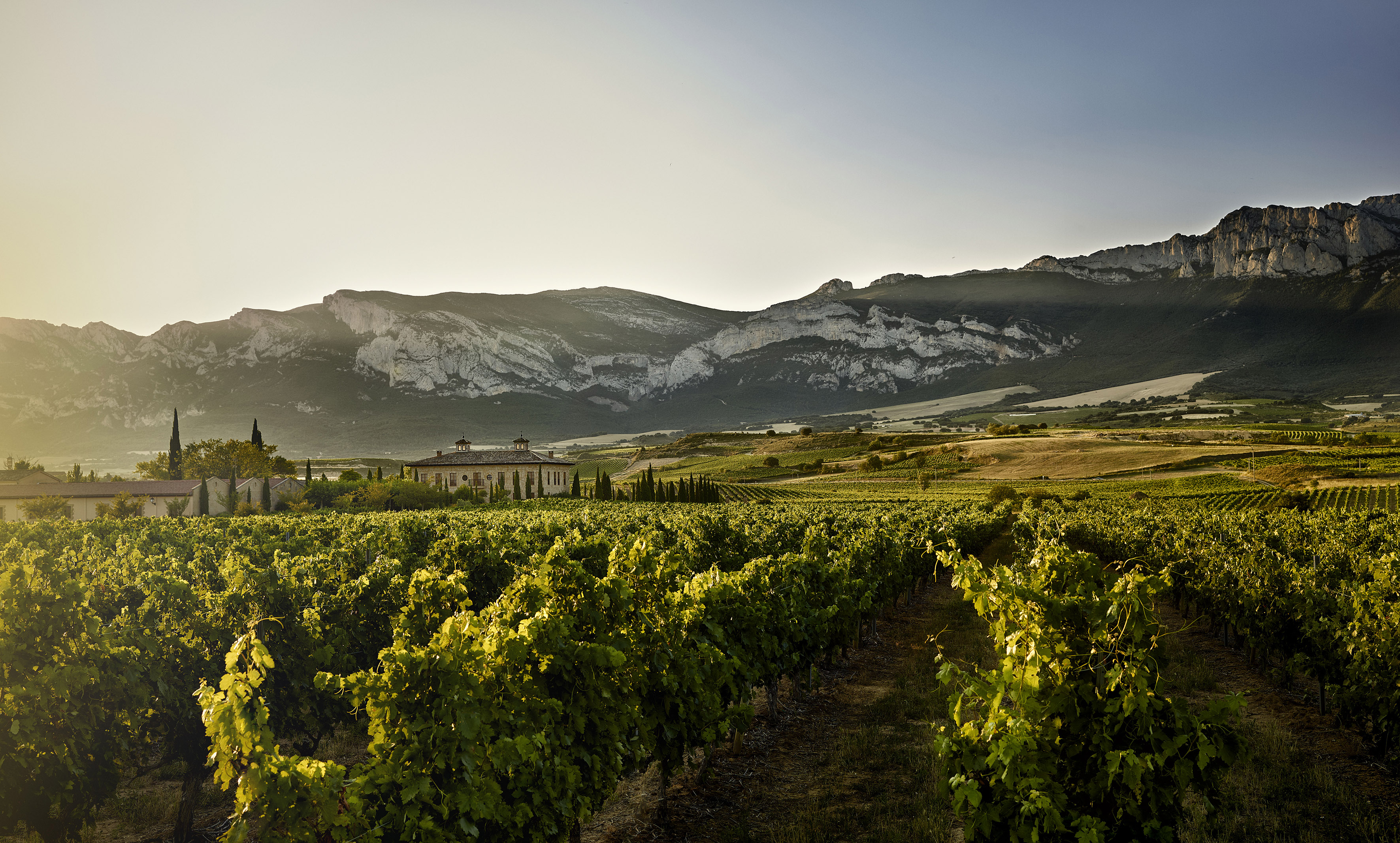 La Rioja Alta – Sticking to Tradition with a Modern Twist