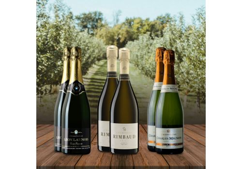 Champagne Mixed Case - 6 Bottles - Save £30