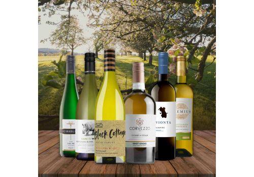 Crisp and Refreshing Whites - 6 Bottles - Save over £15