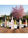 Spring Essentials Case - 12 bottles - Save over £25!