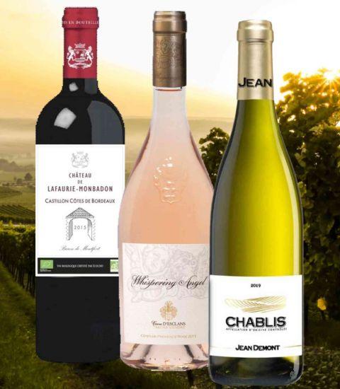 Wine Connoisseur Luxury 3 Bottle Set