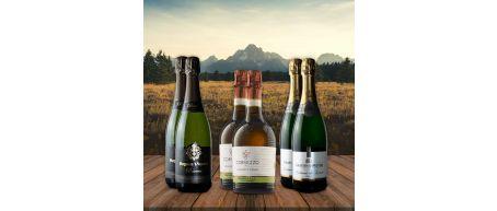Fizz Favourites - 6 Bottles - Save over £10