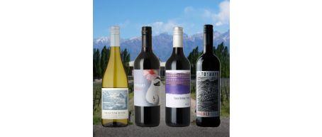 Mixed New World Taster Case - 12 Bottles
