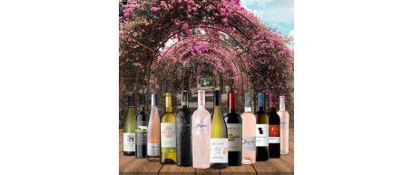 Summer Essentials Case - 12 bottles - Save over £25!