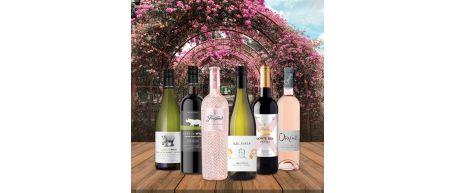Summer Essentials Case -  6 bottles - Save over £15!